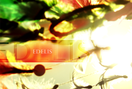 Edelis Art Cover - October, 2014